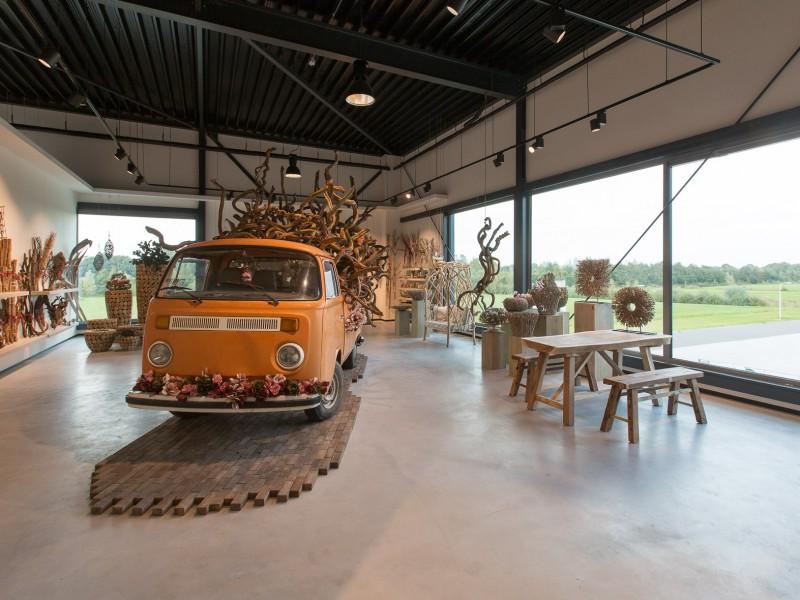 Dijk Coevorden-11